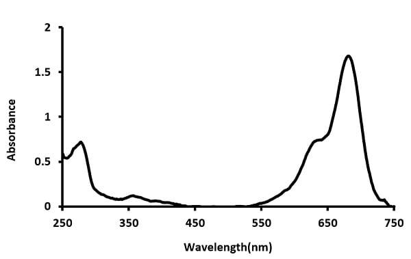 Total Protein Thiol Quantification Assay Kit (Colorimetric) (ab219272)