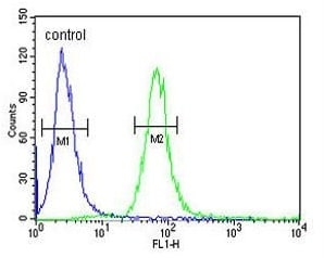 Flow Cytometry - Anti-FECH antibody - N-terminal (ab219349)
