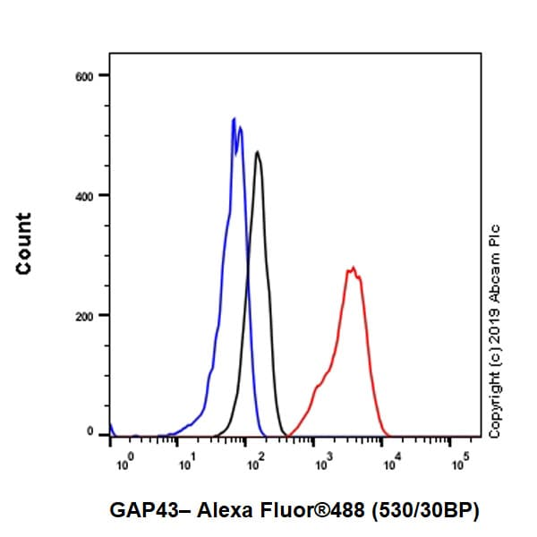 Flow Cytometry - Anti-GAP43 antibody [EP890Y] - BSA and Azide free (ab219582)
