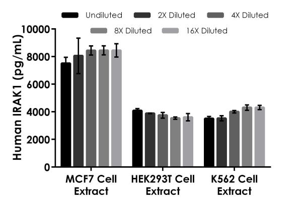 Interpolated concentrations of native IRAK-1 in human MCF7, HEK293T, and K562 extracts based on a 500. 125 and 250 µg/mL extract load.