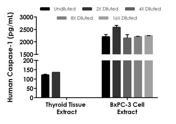 Interpolated concentrations of native Caspase-1 in human thyroid tissue extract based on a 500 µg/mL extract load and BxPC-3 cell extract based on a 250 µg/mL extract load.