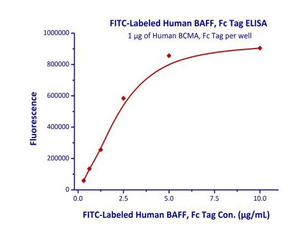 Functional Studies - Recombinant human BAFF protein (Active) (FITC) (ab219665)