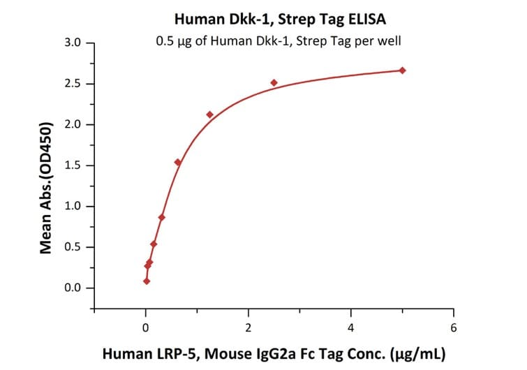 Functional Studies - Recombinant human DKK1 protein (Strep-tag) (ab219694)