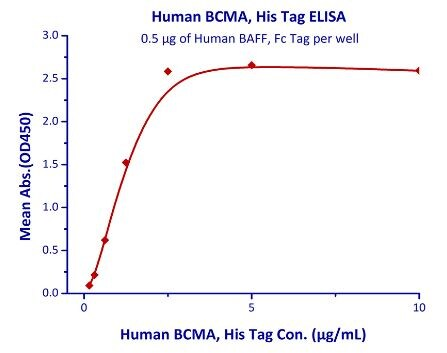 Functional Studies - Recombinant human BCMA protein (Active) (ab219697)