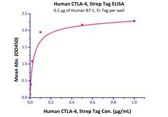 Functional Studies - Recombinant human CTLA4 protein (Active) (ab219715)