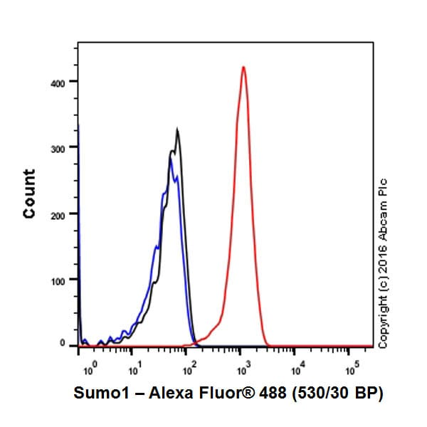 Flow Cytometry - Anti-Sumo 1 antibody [Y299] - BSA and Azide free (ab219724)