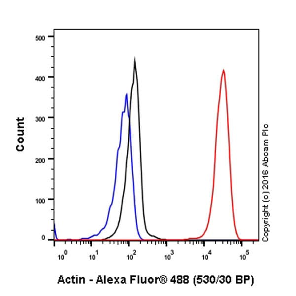 Flow Cytometry - Anti-Actin antibody [EPR16769] - BSA and Azide free (ab219733)