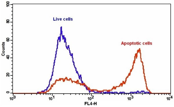 The detection of binding activity of Annexin V-iFluor 647 and phosphatidylserine in Jurkat cells.
