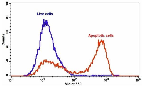 The detection of binding activity of Annexin V-mFluor Violet 550 and phosphatidylserine in Jurkat cells