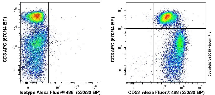 Flow Cytometry - Anti-CD53 antibody [MRC OX-44] (ab22383)