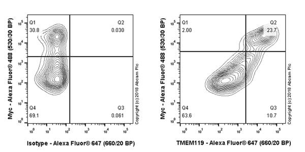 Flow Cytometry - Anti-TMEM119 antibody [106-6] - BSA and Azide free (ab220249)