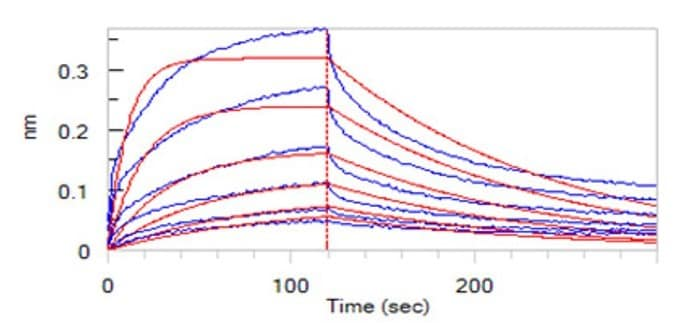 Functional Studies - Recombinant mouse CD137 protein (Fc Chimera) (ab220549)