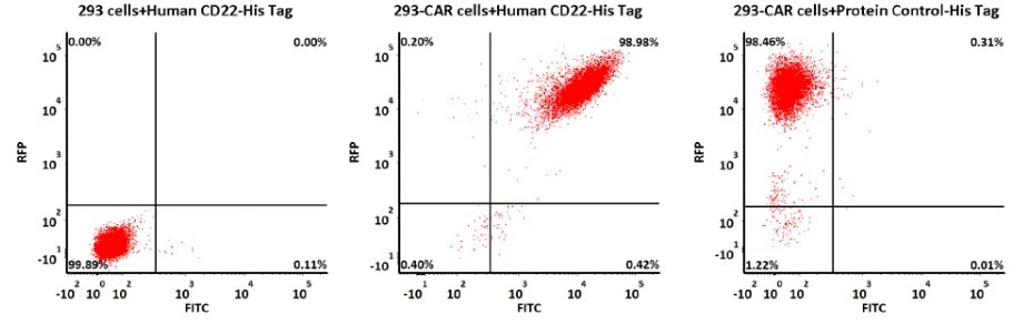 Flow Cytometry - Recombinant Human CD22 protein (His tag) (ab220572)