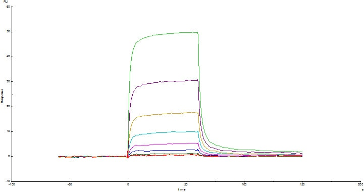 Functional Studies - Recombinant human CD3 protein (Active) (ab220577)