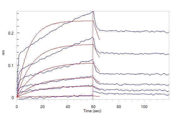 Biological activity - Recombinant human CD47 protein (Fc Chimera Active) (ab220587)