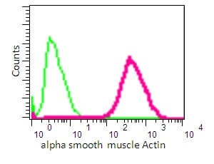 Flow Cytometry - Anti-alpha smooth muscle Actin antibody [EPR5368] - BSA and Azide free (ab220795)