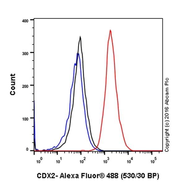 Flow Cytometry - Anti-CDX2 antibody [EPR2764Y] - BSA and Azide free (ab220799)