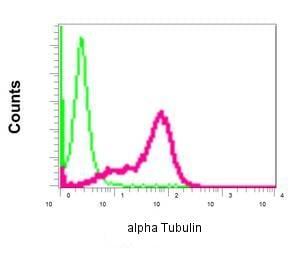 Flow Cytometry - Anti-alpha Tubulin antibody [EPR13478(B)] - BSA and Azide free (ab220805)