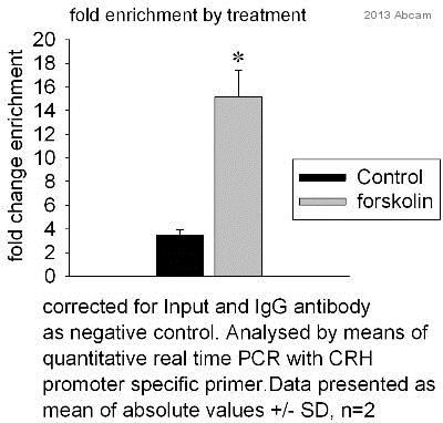 ChIP - Anti-CRTC3 antibody [EPR3440] - BSA and Azide free (ab220809)