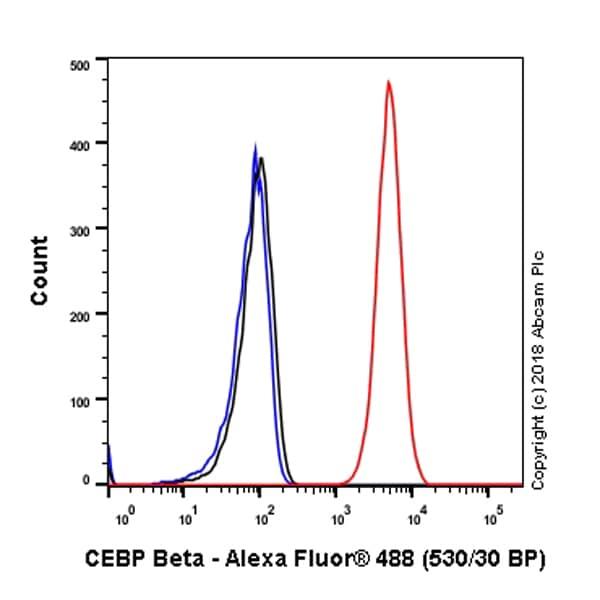 Flow Cytometry - Anti-CEBP Beta antibody [E299] - BSA and Azide free (ab220813)