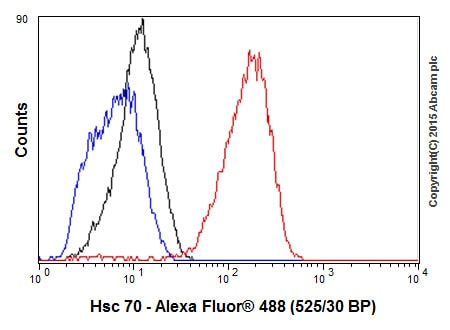 Flow Cytometry - Anti-Hsc70 antibody [EP1531Y] - BSA and Azide free (ab220821)