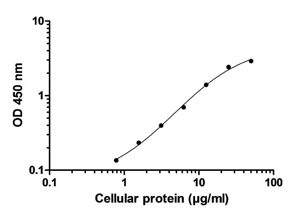 Example of p38 MAPKa (pT180/Y182) cell lysate standard curve