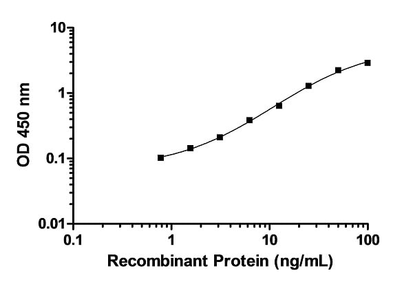 Example of p38 MAPKa recombinant protein standard curve