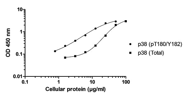 Example of p38 MAPKa (pT180/Y182) and p38 MAPKa (Total) cell lysate standard curve