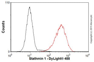 Flow Cytometry - Anti-Stathmin 1 antibody [EP1573Y] - BSA and Azide free (ab221017)