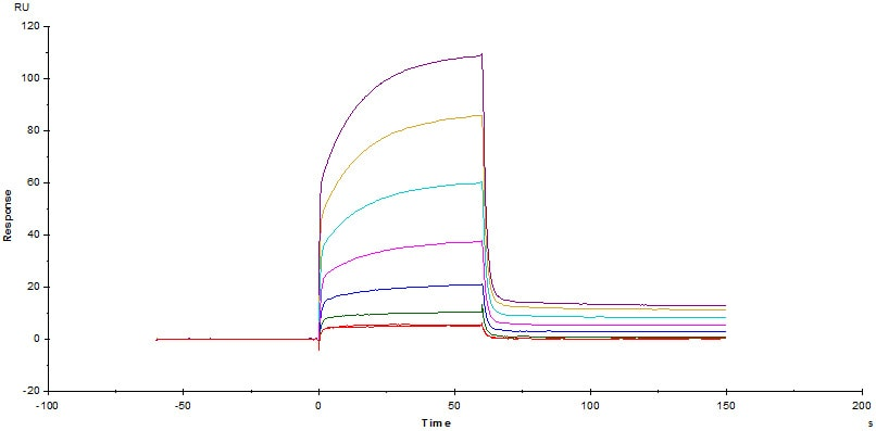 Functional Studies - Recombinant human PD1 protein (Fc Chimera Active) (ab221398)