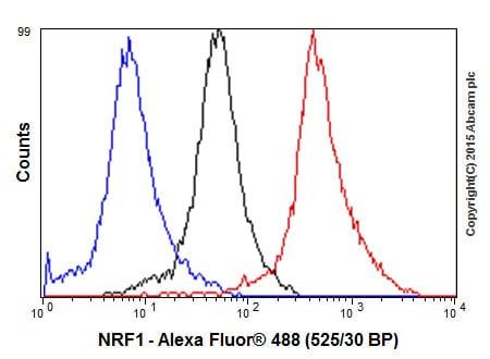 Flow Cytometry - Anti-NRF1 antibody [EPR5554(N)] - BSA and Azide free (ab221792)