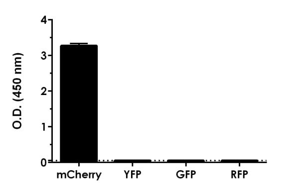 Raw O.D. values are shown for mCherry protein, YFP, GFP, and RFP.