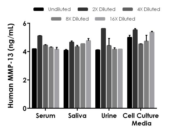 Interpolated concentrations of spiked MMP-13 in human serum, saliva, urine, and cell culture media samples