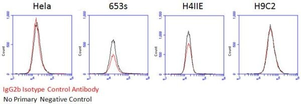 Flow Cytometry - Mouse IgG2b, kappa monoclonal [7E10G10] - Isotype Control - BSA and Azide free (ab221850)