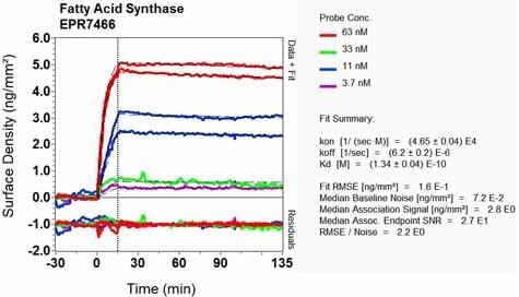 OI-RD Scanning - Anti-Fatty Acid Synthase antibody [EPR7466] - BSA and Azide free (ab221934)