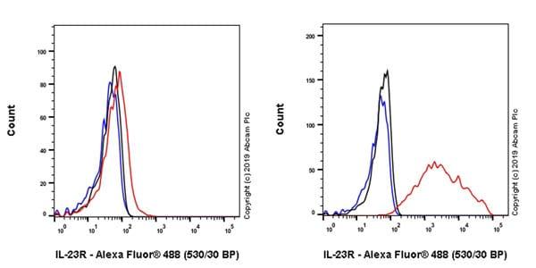 Flow Cytometry - Anti-IL-23R antibody [EPR22838-4] (ab222104)