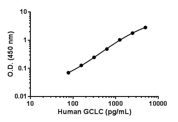 Human GCLC standard curve