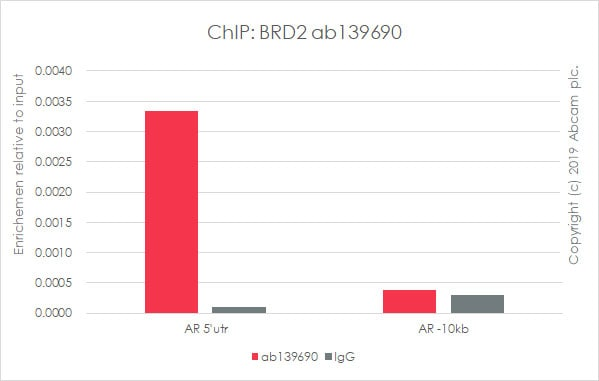 ChIP - Anti-BRD2 antibody [EPR7642] - BSA and Azide free (ab222393)