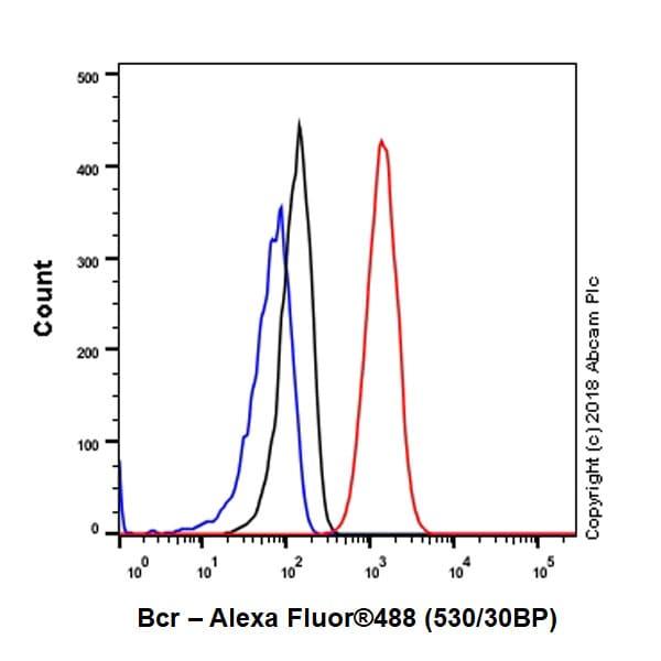 Flow Cytometry - Anti-Bcr antibody [EPR22062] (ab222406)