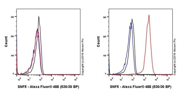 Flow Cytometry (Intracellular) - Anti-SNF5/SMARCB1 antibody [EPR20189] (ab222519)