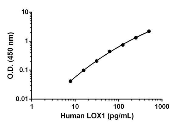 Sandwich ELISA - Anti-LOX 1 antibody [EPR18837-47] (ab222576)