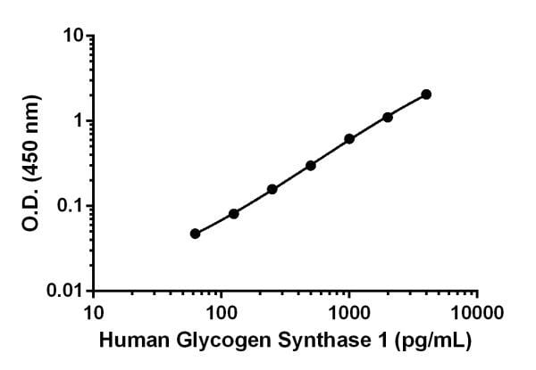 Sandwich ELISA - Anti-Glycogen synthase 1/GYS1 antibody [EPR19261-142] (ab222626)
