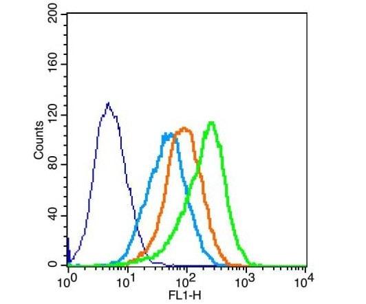 Flow Cytometry - Anti-Occludin antibody (ab222691)