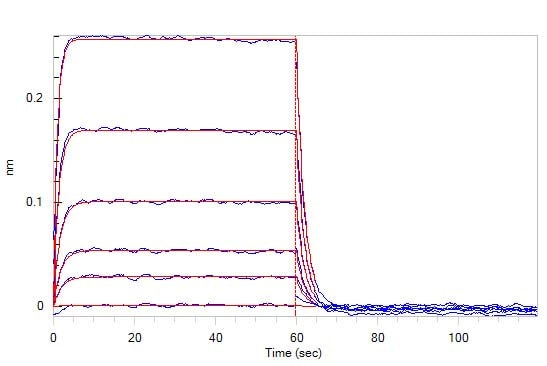 Functional Studies - Recombinant human TIGIT protein (Fc Chimera Active) (ab223110)