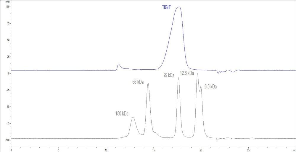HPLC - Recombinant cynomolgus monkey TIGIT protein (Active) (ab223112)