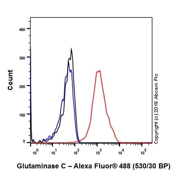 Flow Cytometry - Anti-Glutaminase C antibody [EPR19525] - BSA and Azide free (ab223129)