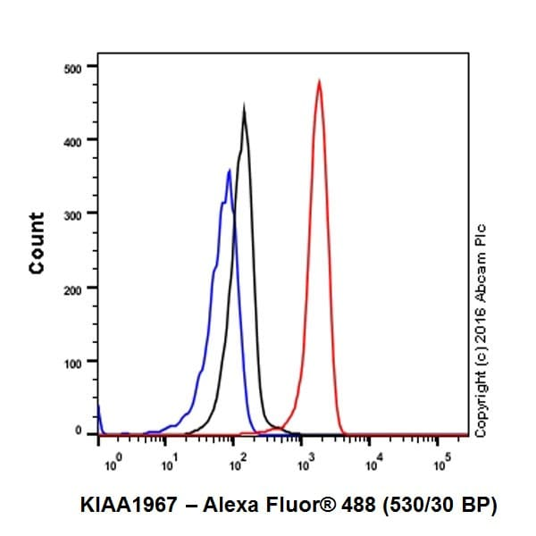Flow Cytometry - Anti-DBC-1 antibody [EPR19747] - BSA and Azide free (ab223530)