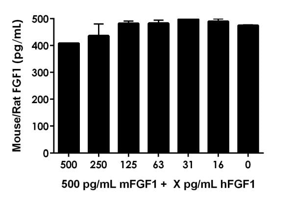 Human FGF1 active protein (hFGF1) was added at the indicated concentrations to 500 pg/ml mouse FGF1 (mFGF1) to test for Interference.