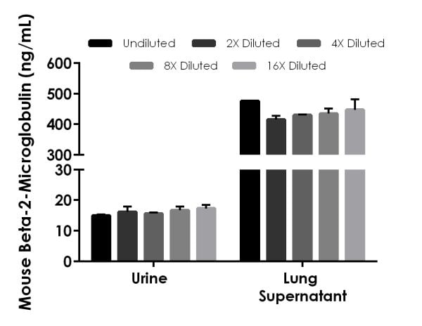 Interpolated concentrations of native Beta-2-Microglobulin in mouse urine and lung tissue culture supernatant samples