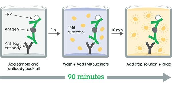Other - Mouse Beta-2-Microglobulin ELISA Kit (ab223590)